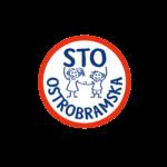 100_logotyp-01
